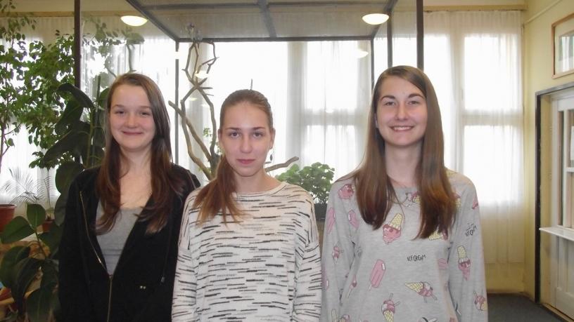 Kerületi műveltségi versenyen 7. helyezést elért 8.b osztályos csapat