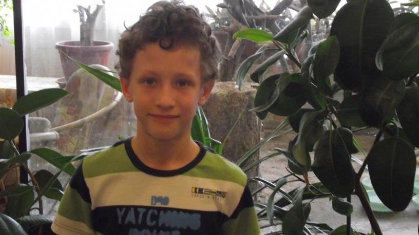 Zrínyi területi matematika versenyen Borsos Miklós 3.b 11. lett
